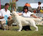retriever_club_winner_12_druskininkai_img_3633