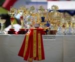 retriever_club_winner_12_druskininkai_img_3752