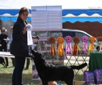 2013-05-05-lt-retriever-club-show-img_1838
