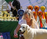 2013-05-05-lt-retriever-club-show-img_2235