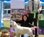 2013-05-05-lt-retriever-club-show-img_2241