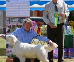 2013-05-05-lt-retriever-club-show-img_2266