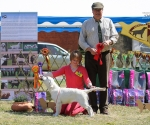 2013-05-05-lt-retriever-club-show-img_2417