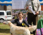 2013-05-05-lt-retriever-club-show-img_2520