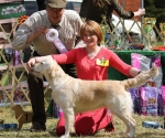 2013-05-05-lt-retriever-club-show-img_2584
