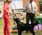 2013-05-05-lt-retriever-club-show-img_2706