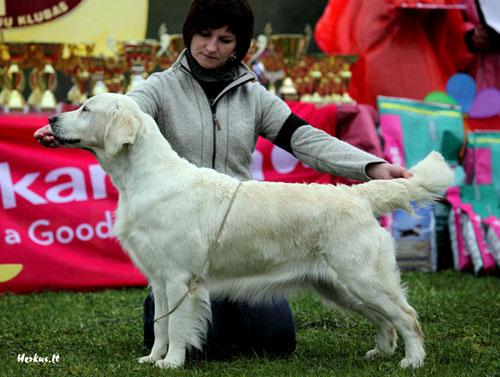 Gutta Herkus, nuotrauka iš www.herkus.lt