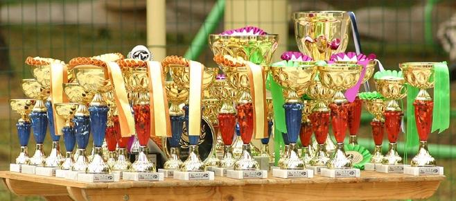 LRMK specializuotos parodos taurės