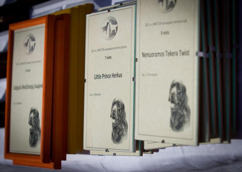 apdovanojome geriausius 2011 m. retriverius statulėlėmis bei padėkos raštais