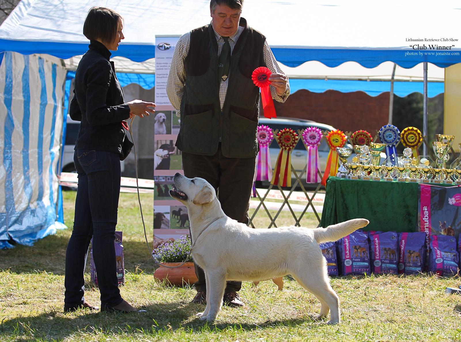 JOHN GALLIANO GORSKA FANTAZJA - l. perspektyvus - 1, geriausias veislės mažylis (Best Puppy)