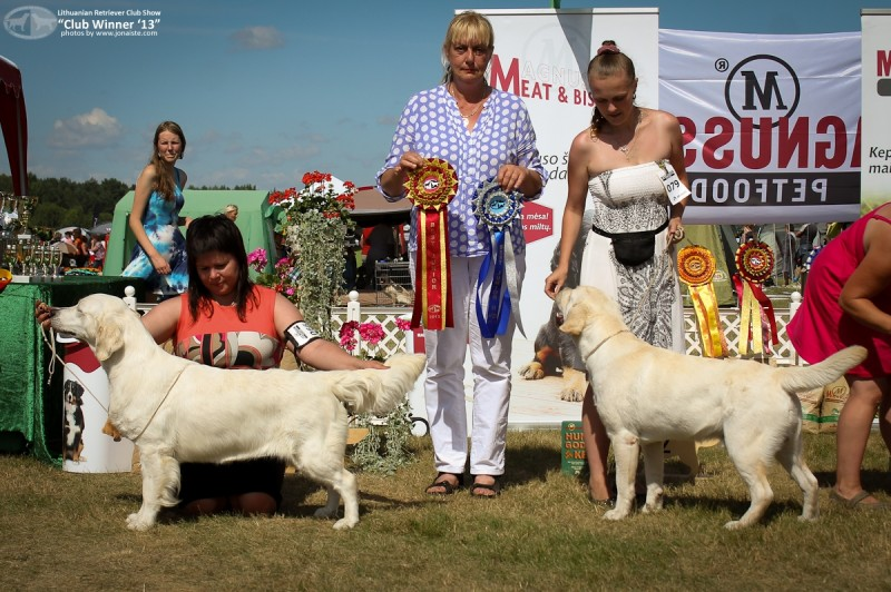 Junior BIS-1  NENUORAMOS PIECE OF BEAUTY, own. S. Petraitienė  ir Junior BIS-2 LAB'SPB HEARTBREAKER, own. Egorova A.