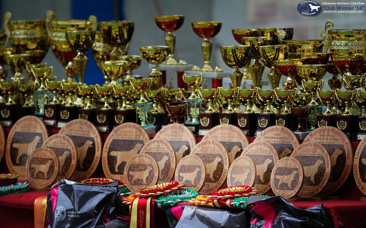 Parodos nugalėtojų apdovanojimai