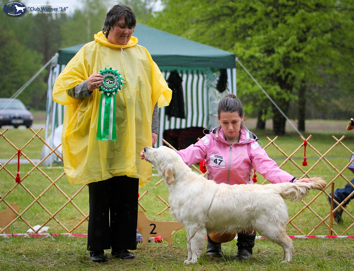 Puppy BIS-2 - FESTIVAL'S THE PRINCESS' TI HI, sav. D. ir D. Kvedarai