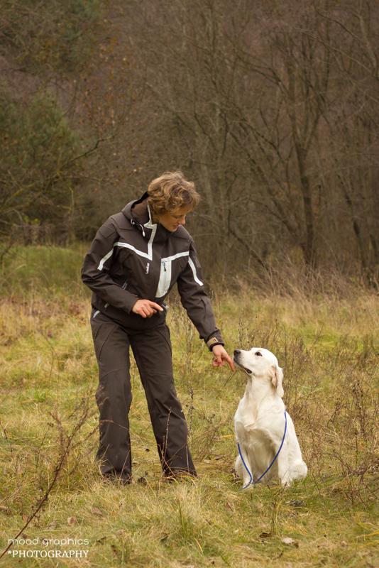 Vedlys duoda šuniui komandą likti vietoje