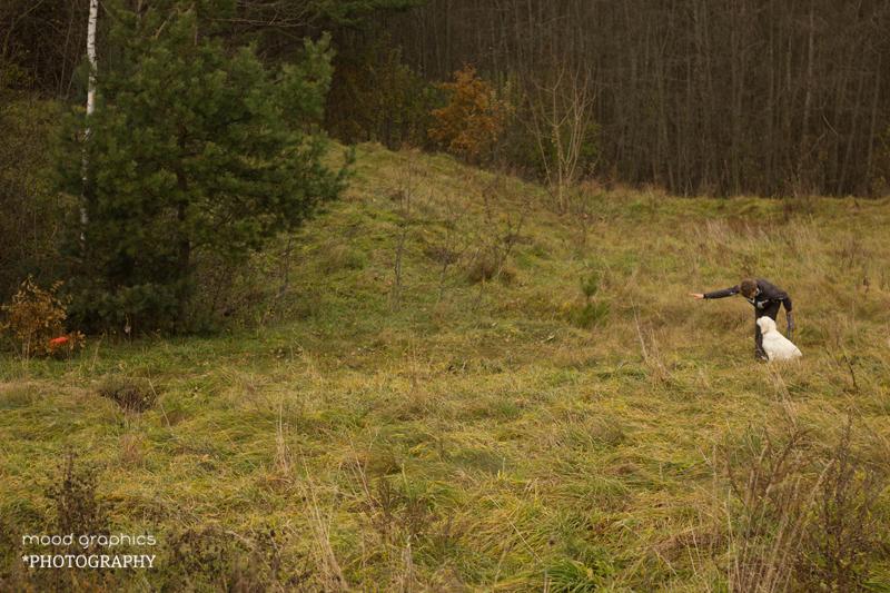 Vedlys arba asistentas numeta žaisliuką į aukštą žolę ar krūmus