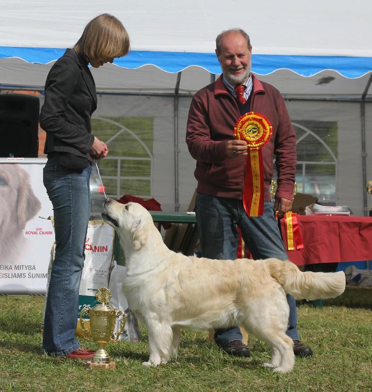 Bora Balta Letena - puikiai - 1, LT CAC, N (geriausia kalytė), BOB (geriausia veislės atstovė), BIS-1 (gražiausias parodos šuo) R.Gabarto nuotrauka