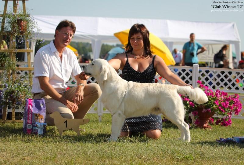 Adriano Elaiodoro - v. promising - 1, BIS-1 Puppy