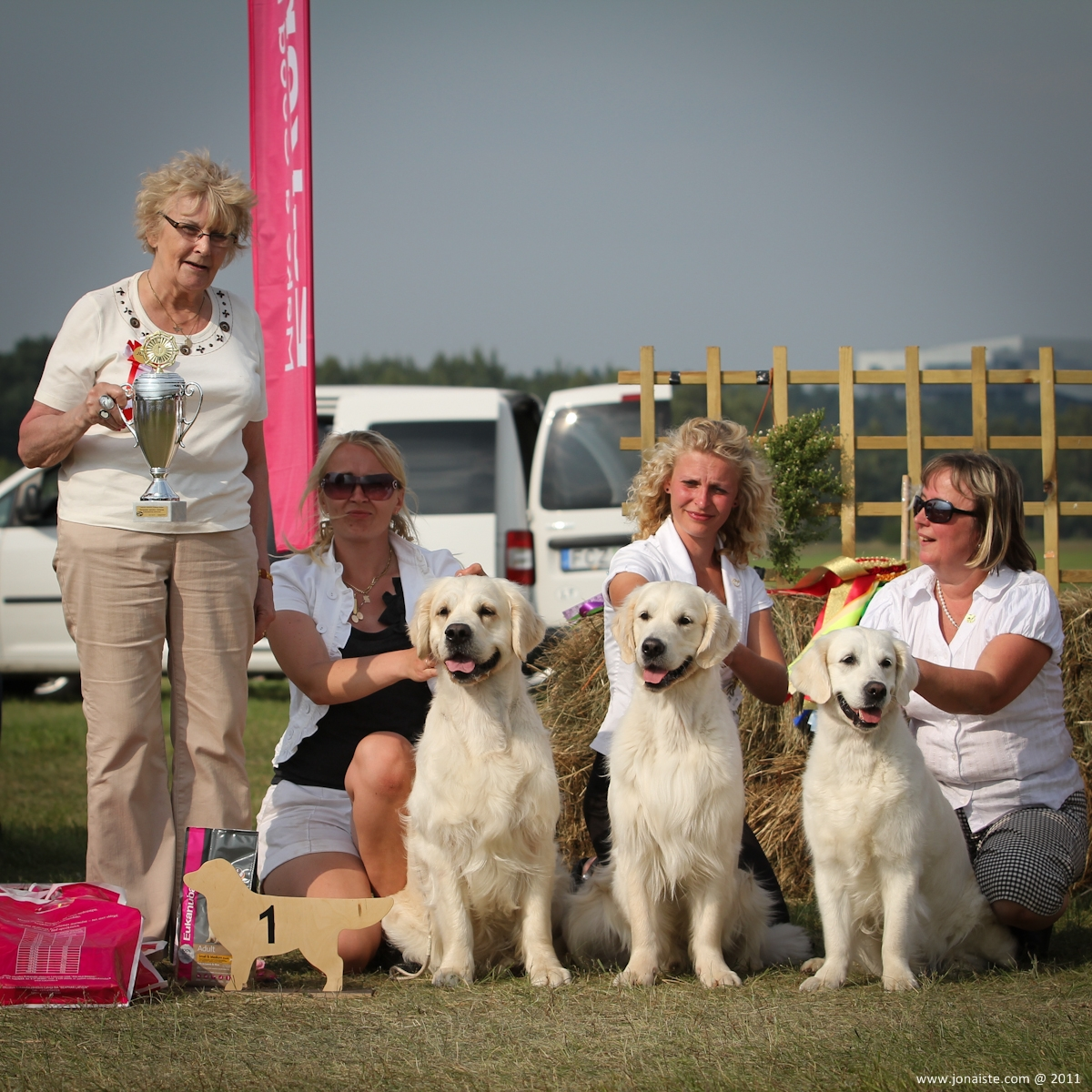 Geriausias auksaspalvių retriverių kennel - 1 place GREENHILL`S own. Virtanen Anne