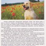 2003-2007 LRMK metų knygos įžanginis žodis, nuotraukos ir teksto autorė Jolita Mikolaitienė.