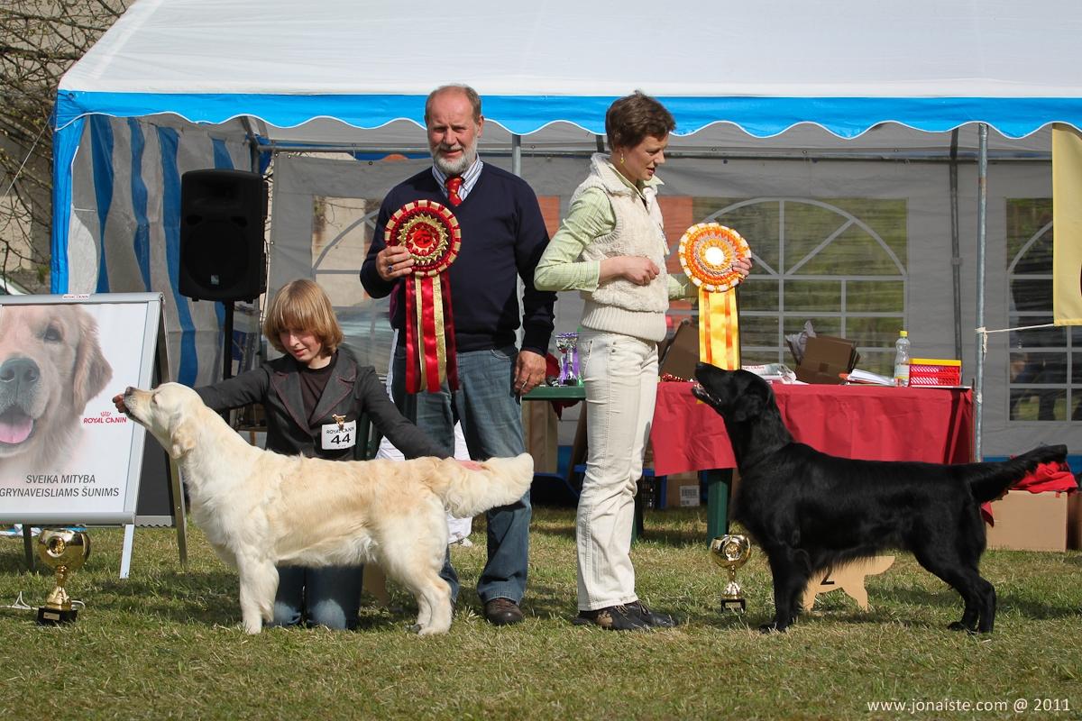 Gražiausi parodos šunys: BIS-1 Bora Balta Letena ir BIS-2 Metsavirnan Kentuckian Lily