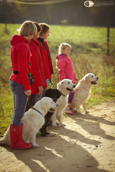 Į bandymus buvo registruoti 4 šunys, A lygyje - 2 šunys (auksaspalvis ir lygiaplaukis retriveriai), B lygyje du auksaspalviai retriveriai.