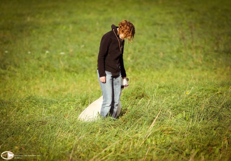 Rūta ir Grotas | Rudeniniai retriverių A ir B lygio lauko bandymai 2012 09 29